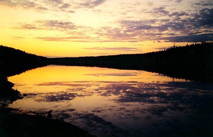 Река вага белые ночи