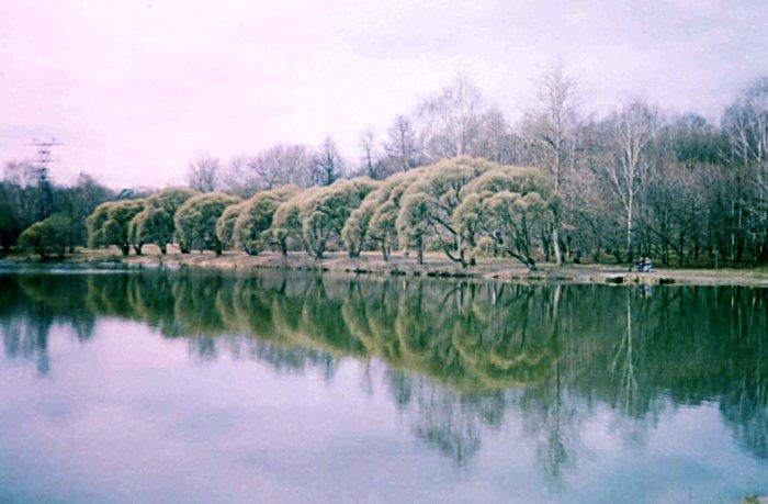 http://alynd.narod.ru/photo/priroda/47.jpg